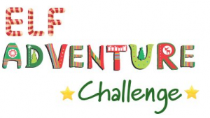 Elf Adventure Challenge Promo Codes